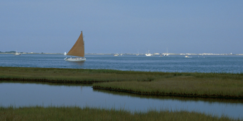 Sailboat off the marsh on Cape Cod